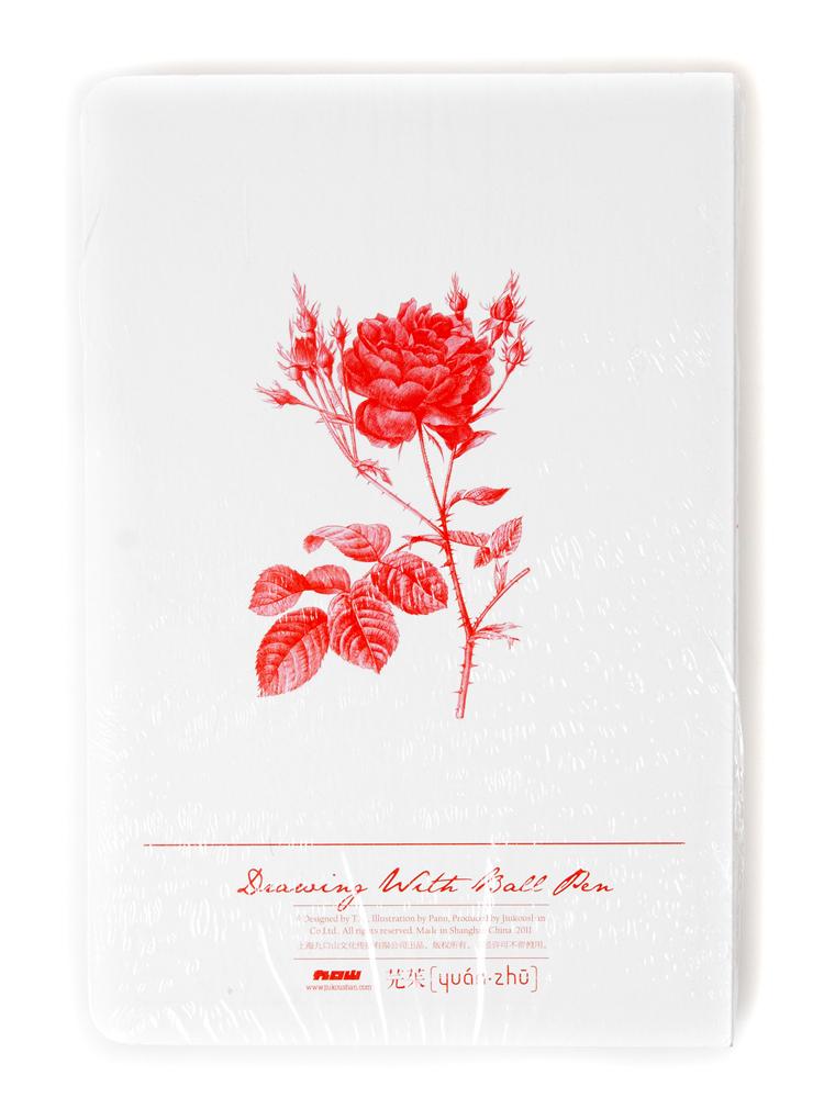 玫瑰花工笔画线稿展示